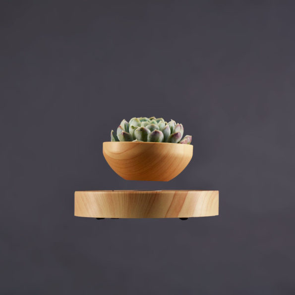 Desert – svävande blomkruka